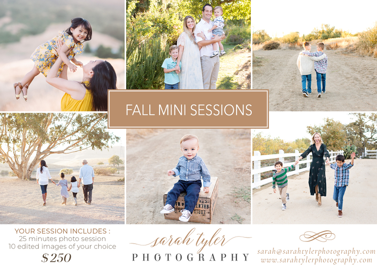 livermore pleasanton photographer mini session flyer