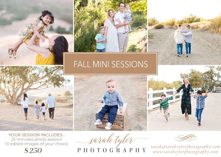 livermore pleasanton photographer mini session flyer