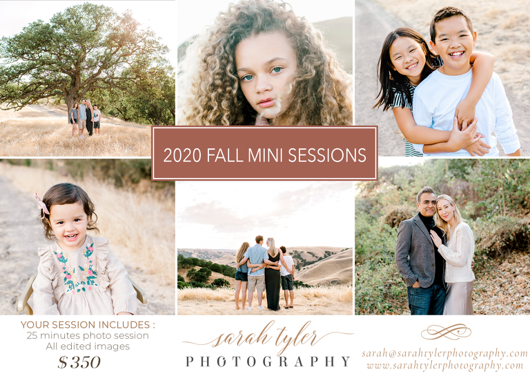 Bay Area Fall Mini Sessions announcement